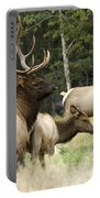 Bull Elk With His Harem Portable Battery Charger by Bob Christopher
