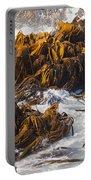Bull Kelp Durvillaea Antarctica Blades In Surf Portable Battery Charger