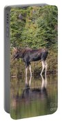 Bull Moose 3 Portable Battery Charger