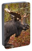 Bull Moose II Portable Battery Charger