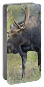 Bull Moose IIIIi Portable Battery Charger
