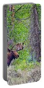 Bull Moose In Gros Ventre Campground In Grand Tetons National Park-wyoming Portable Battery Charger