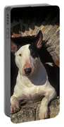 Bull Terrier Dog Portable Battery Charger