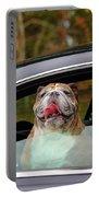 Bulldog Bliss Portable Battery Charger