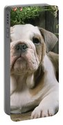 Bulldog Puppy With Flowerpots Portable Battery Charger
