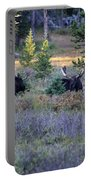 Bulls In The Meadow Portable Battery Charger