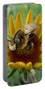 Bumble Bee Beauty Portable Battery Charger