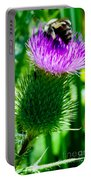 Bumble Bee On Bull Thistle Plant  Portable Battery Charger