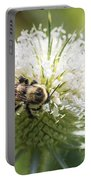 Bumble Bee On Button Bush Flower Portable Battery Charger