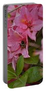 Bumblebee In Pink Portable Battery Charger