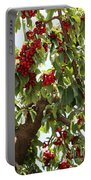 Bumper Crop - Cherries Portable Battery Charger