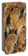 Bunny Babies Portable Battery Charger