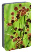 Bur-reed Portable Battery Charger