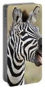 Burchells Zebra Equus Quagga Burchellii Portable Battery Charger