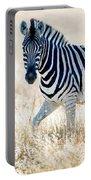 Burchells Zebra Equus Quagga Portable Battery Charger