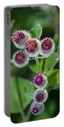 Burdock Flowering Stage Portable Battery Charger