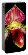 Burgundy Lady Slipper Portable Battery Charger