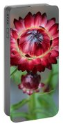 Burgundy Straw Flower Portable Battery Charger