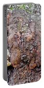 Burl In An Oak Portable Battery Charger