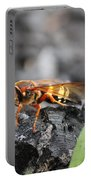 Burn Pile Bee Portable Battery Charger