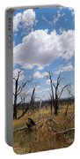 Burned Trees On Colorado Plateau Portable Battery Charger