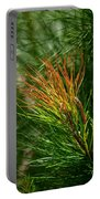 Burnished Pine Portable Battery Charger