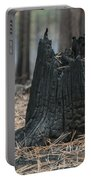 Burnt Tree Trunk Portable Battery Charger
