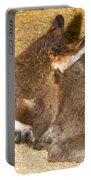 Burro Foal Portable Battery Charger
