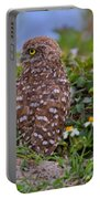 Burrowing Owl Siblings Portable Battery Charger