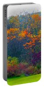 Bursting With Color 1 Portable Battery Charger