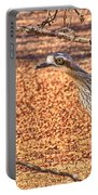 Bush Stone Curlew Portable Battery Charger