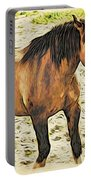 Buster Bronc Portable Battery Charger