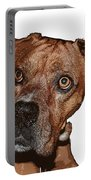 Buster Brown The Boxer Portable Battery Charger by Sandra Clark