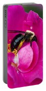 Busy Pink IIi Portable Battery Charger