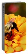 Busybee Portable Battery Charger