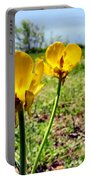 Buttercups Portable Battery Charger