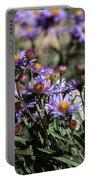 Butterflies And Wildflowers Portable Battery Charger