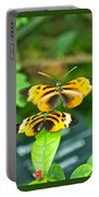 Butterflies Gentle Courtship  3 Panel Composite Portable Battery Charger