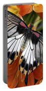 Butterfly 006 Portable Battery Charger