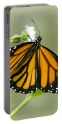 Butterfly 009 Portable Battery Charger