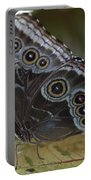Butterfly 015 Portable Battery Charger