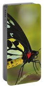 Butterfly 022 Portable Battery Charger