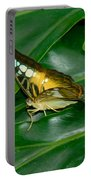 Butterfly 1 Portable Battery Charger