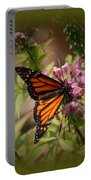Butterfly 5 Portable Battery Charger