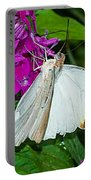 Butterfly 63 Portable Battery Charger