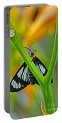 Butterfly An3597-13 Portable Battery Charger