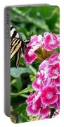 Butterfly And Sweet Williams Portable Battery Charger