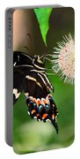 Butterfllies And The Crystal Balls Portable Battery Charger