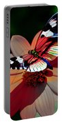 Butterfly Dont Fly Away Portable Battery Charger