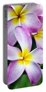 Butterfly Flowers Portable Battery Charger